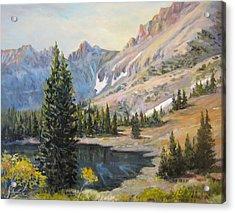 Great Basin Nevada Acrylic Print by Donna Tucker