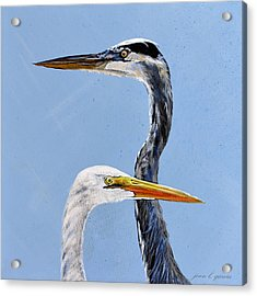 Great Blue And White Acrylic Print