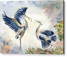 Great Blue Heron Couple Acrylic Print by Melly Terpening