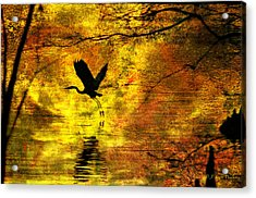 Acrylic Print featuring the digital art Great Blue Heron In Moment Of Suspense by J Larry Walker