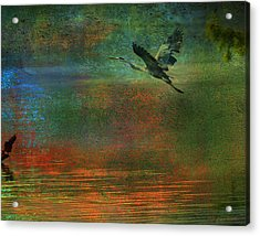 Great Blue Heron In Mystic Flight Acrylic Print by J Larry Walker