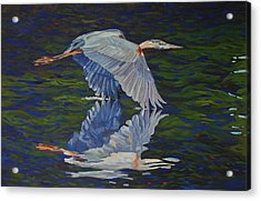 Great Blue Reflections Acrylic Print