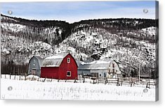 Great Canadian Red Barn In Winter Acrylic Print by Peter v Quenter