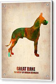 Great Dane Poster Acrylic Print by Naxart Studio