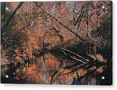 Great Egg Harbor River Acrylic Print
