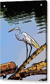 Great Egret Fishing Abstract Acrylic Print