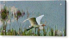 Great Egret Painting Acrylic Print
