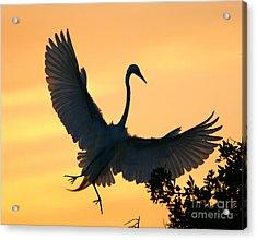 Acrylic Print featuring the photograph  Sunset Ballet by John F Tsumas