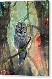 Great Grey Owl In Abstract Acrylic Print by Paul Krapf