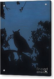 Acrylic Print featuring the drawing Owl At Night by D Hackett