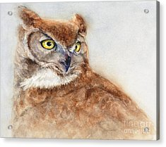Acrylic Print featuring the painting Great Horned Owl by Bonnie Rinier
