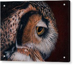 Acrylic Print featuring the painting Great Horned Owl Portrait by Pat Erickson