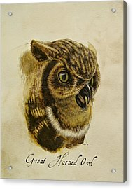 Great Horned Owl Acrylic Print by Rachel Root