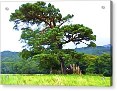 Great Pine Acrylic Print