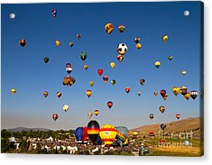 Great Reno Balloon Race Acrylic Print