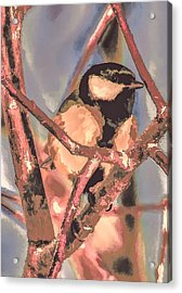Acrylic Print featuring the photograph Great Tit  A  Leif Sohlman by Leif Sohlman