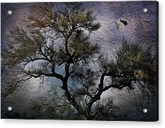 Acrylic Print featuring the photograph Greatness by Barbara Manis