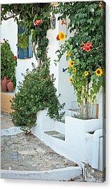 Greek House Acrylic Print by Tom Gowanlock
