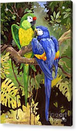 Green And Blue Tropical Macaw Acrylic Print