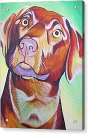 Acrylic Print featuring the painting Green And Brown Dog by Joshua Morton