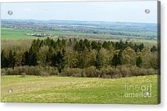 Green And Pleasant Land Acrylic Print by Julie Koretz