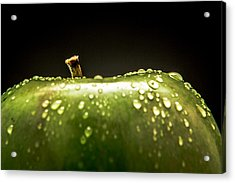 Green Apple Acrylic Print by Wade Brooks
