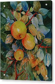 Green Apples Acrylic Print
