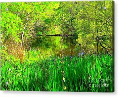 Acrylic Print featuring the photograph Green As Emerald's by Michael Hoard