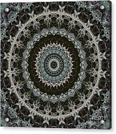 Green Brown Mandala Acrylic Print by Kathi Shotwell