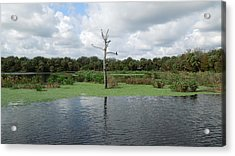 Acrylic Print featuring the photograph Green Cay Panorama by Ron Davidson