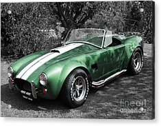 Green Cobra Acrylic Print by Nicholas Burningham
