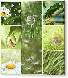 Green Collage Acrylic Print by Veronica Minozzi