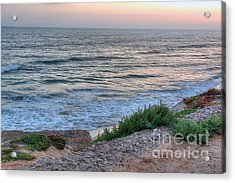 Green Dog Beach Coastline Acrylic Print by Deborah Smolinske