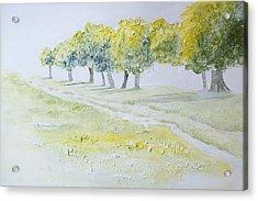 Green Double Path Acrylic Print by Mary Adam