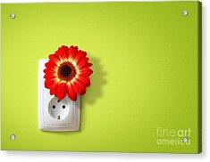 Green Electricity Acrylic Print by Carlos Caetano