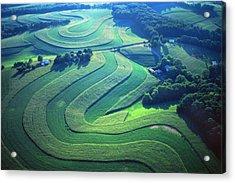 Green Farm Contours Aerial Acrylic Print