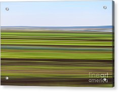 Green Field Abstract Acrylic Print