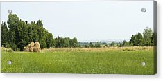 Green Field Panorama Acrylic Print