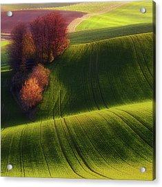 Green Fields Acrylic Print by Piotr Krol (bax)