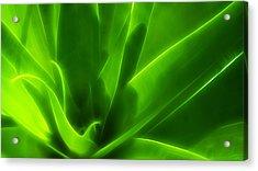 Green Flame Acrylic Print by Suradej Chuephanich
