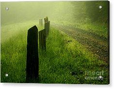 Green Fog Acrylic Print by Deena Otterstetter
