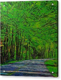 Green Forest Drive On Metal Acrylic Print by Dan Sproul