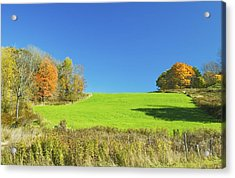 Green Hay Field And Autumn Trees In Maine Acrylic Print by Keith Webber Jr