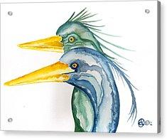 Green Herons Acrylic Print by Alexandra  Sanders
