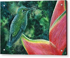 Green Hummingbird Acrylic Print by Sandra LaFaut