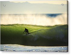 Acrylic Print featuring the photograph Green Monster C6j9362 by David Orias