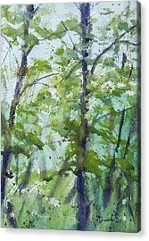 Green Morning 2 Acrylic Print
