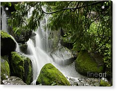 Green Moss Waterfall Acrylic Print