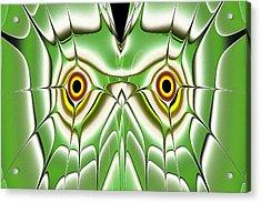 Green Owl Acrylic Print