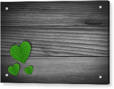 Green Pedal Shaped Hearts Acrylic Print by Aged Pixel